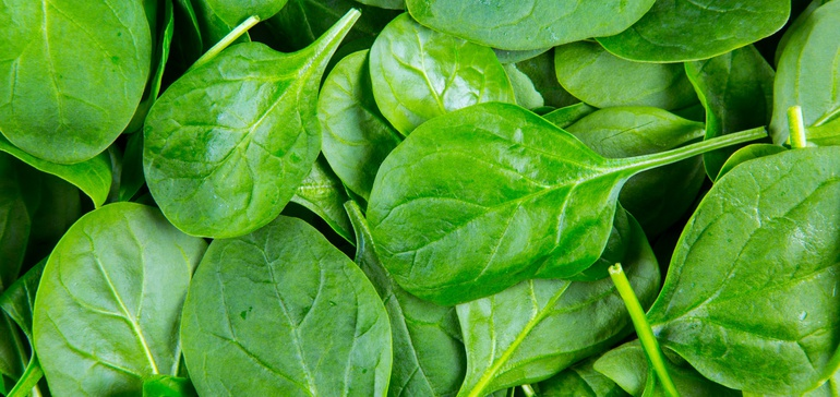 Vertical farming outfit raises $100M in funding